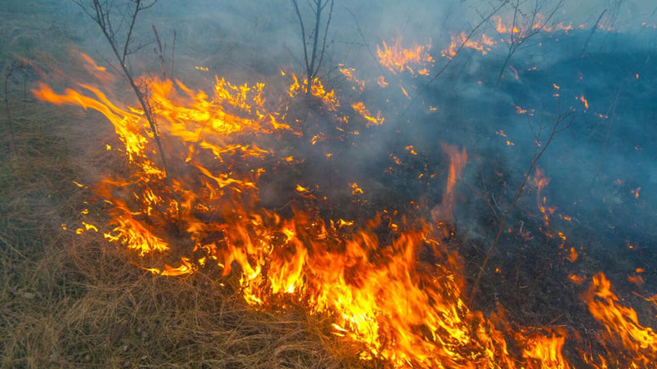 Brandrisico natuurgebieden naar fase 2