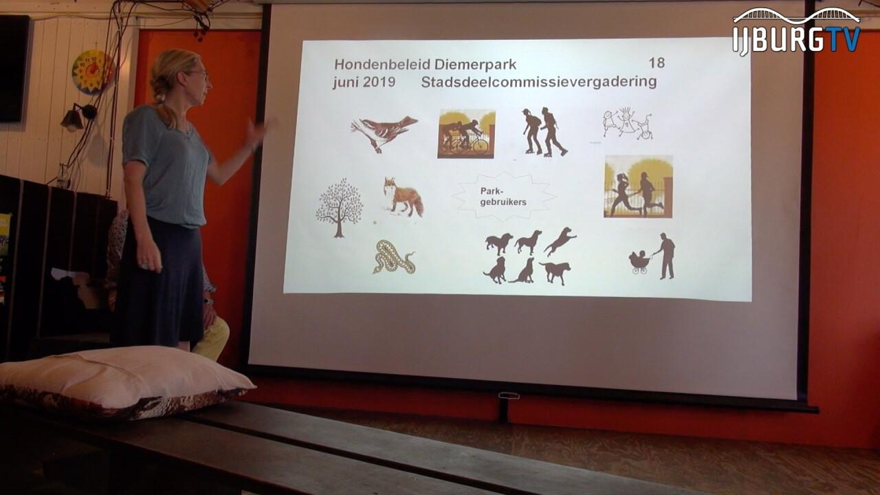 VIDEO: Stadsdeelcommissie bespreekt het hondenbeleid in het Diemerpark
